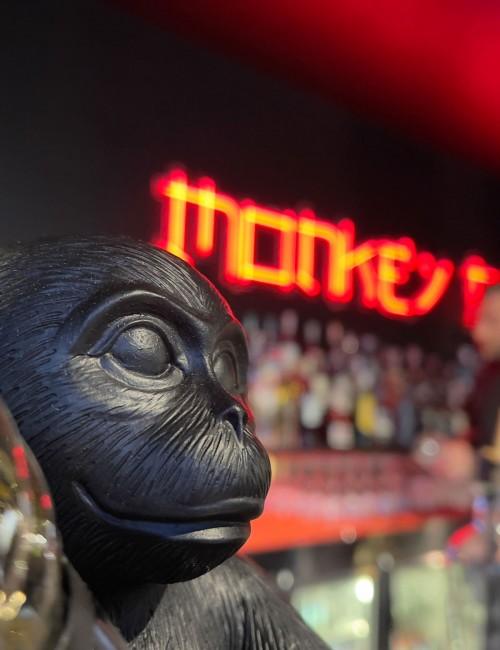 Monkey Punch - Ideazione, riprese, montaggio e pubblicazione del video dell'inaugurazione (2021)